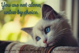 You are not alone unless by choice