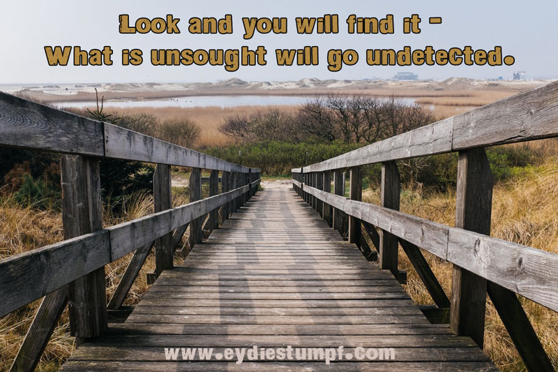 Look and you will find it - what is unsought will go undetected